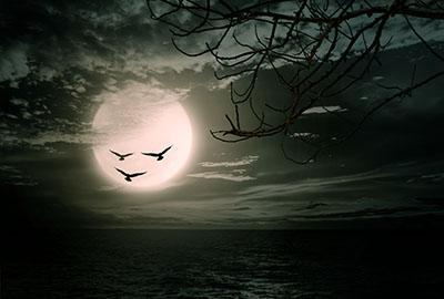 full-moon-taurus-ydd10272015